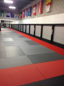 About The Martial Arts Training Centre Large Dojo